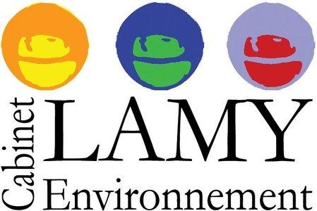 Didier Lamy