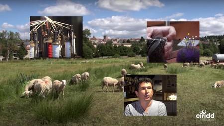[Vidéo ECLAIRA] La filière laine, source de synergies au Pays de Saugues