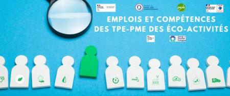 ENQUÊTE EMPLOIS ET COMPETENCES DES TPE-PME DES ECO-ACTIVITES