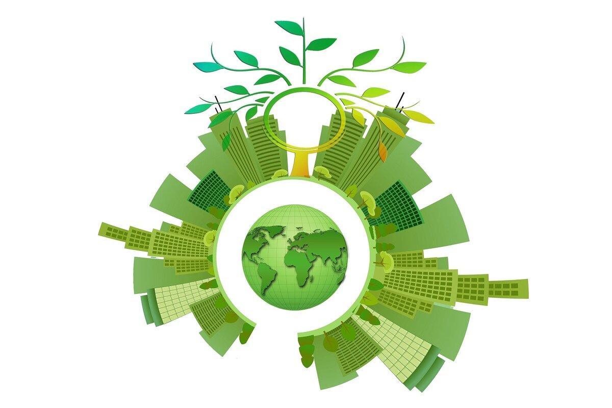 Webinaires : Semaine régionale du Bois-énergie
