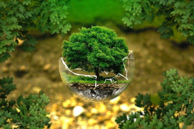 Appel à manifestation d'intérêt « Partenaires Environnement Energie »