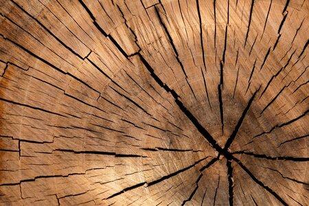 3 Bois, les circuits courts du combustible bois local à haute valeur