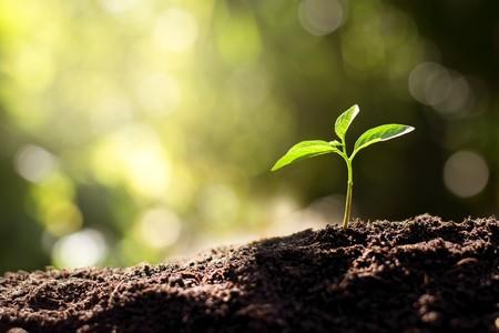 Terenvie, la valorisation matière écologique
