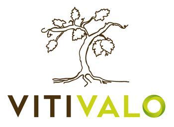 Vitivalo, un projet de recherche fédérateur en réponse à une problématique du territoire !